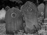 general_cemetery-9203