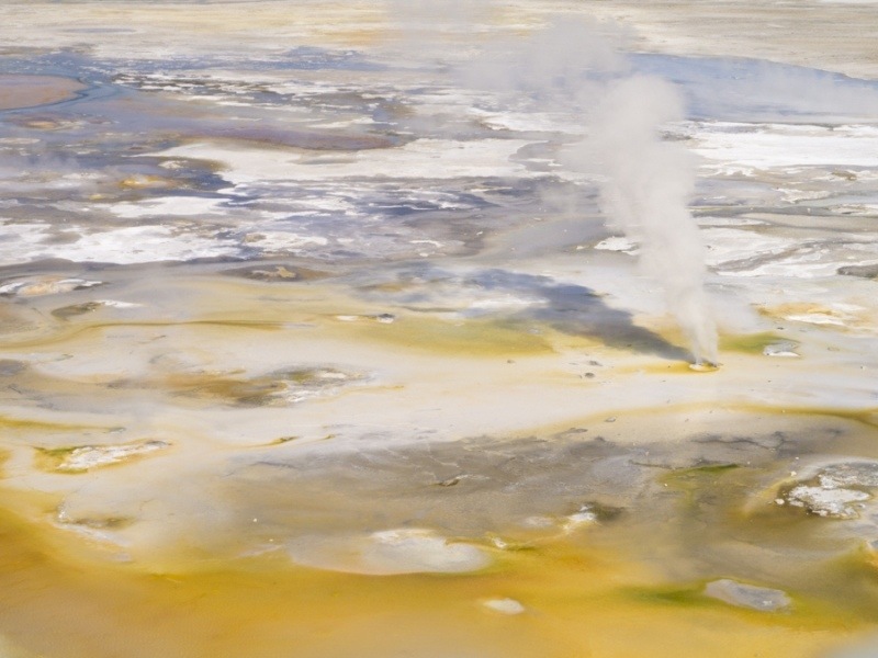 Yellowstone_Norris Geyser Basin-1030574