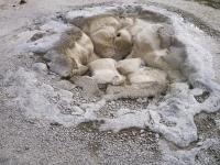 Yellowstone_Upper Geyser Basin-1030916
